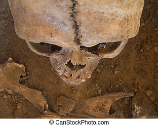 Human skull seen from above with soil in the background