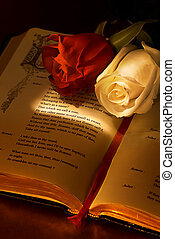 "What's in a Name - Two roses on the famous book ""romeo and..."