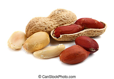 peanut isolated on white background
