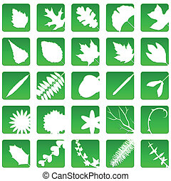 Plant icons - Collection of nature icons with leaves and...