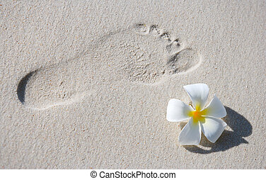 Footprint on white sand - Footprint and frangipani flower on...