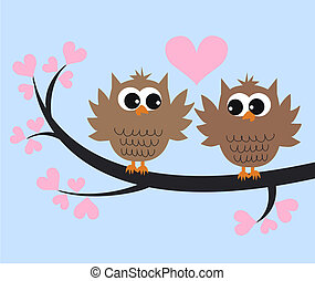 owl couple - two cute owls in love