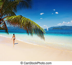 Tropical beach, Thailand - Tropical paradise with palms and...