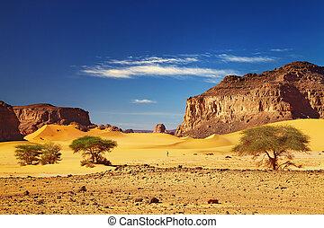 Sahara Desert, Tadrart, Algeria - Desert landscape with...