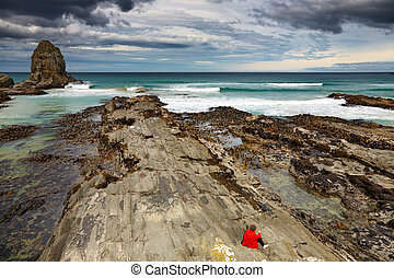 Cannibal Bay, New Zealand - Cannibal Bay, Catlins Coast, New...