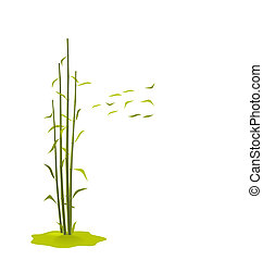 The illustration a wind breaks bamboo leaves, isolated on a...