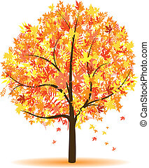 autumn tree - a autumn abstract tree