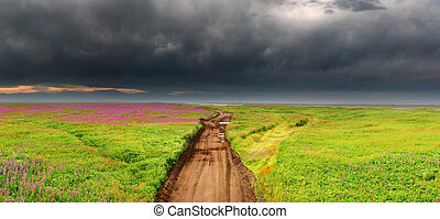 Dirty road in blossoming field - Panorama of dirty road in...