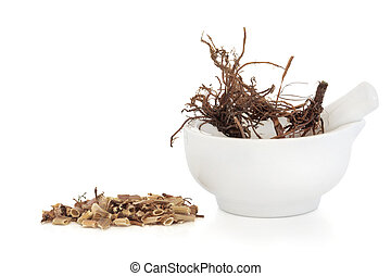 Valerian Herb Root - Valerian herb root in a porcelain...