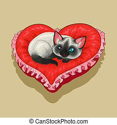 Kitty on red heart shaped pillow - Siam kitty is lying on a...
