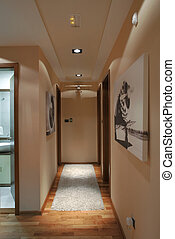 Apartment Halls - Halls of a modern apartment with lighting...