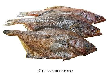 cztery, Świeży, Ryby, flądra