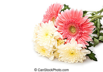 bouquet  - beautiful bouquet isolated on white