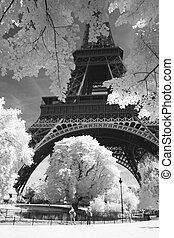 Black and white photo of Eiffel in infrared