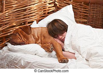kobieta, jej, pies, łóżko, spanie, wygodnie