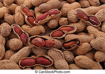 Peanut or groundnut in it's shell ready to eat,