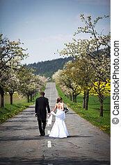young wedding couple - freshly wed groom and bride posing...