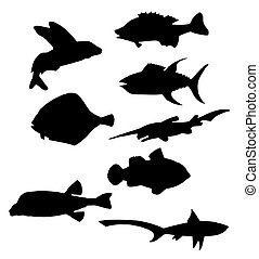 fish silhouettes vector - Collection of vector black...