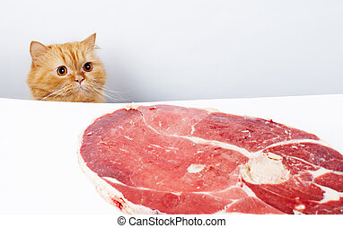 Lucky cat - Cat reach the meat and ready to feast
