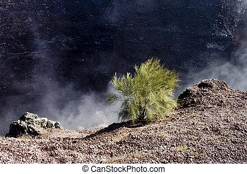 Crater of the Mount Vesuvius.