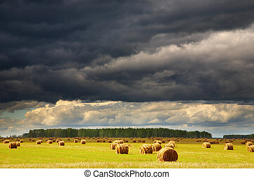 Storm clouds - Landscape with hayfield and storm clouds
