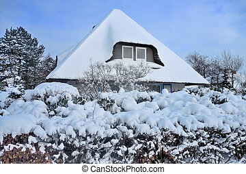 Snow covered thatched roof