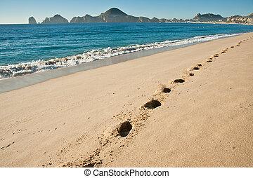 Sandy beach - A sandy tropical beach with foot prints