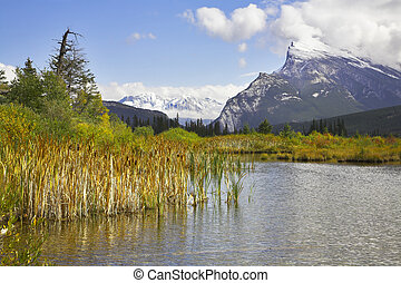 Snow mountains, bogs it overgrown with a grass and the...