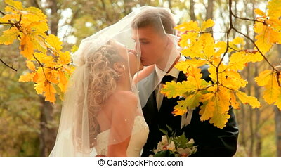 bride and groom kissing - the bride and groom kissing in the...