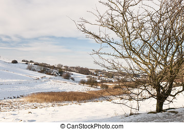 Winter Landscape - Winter landscape From the area at...