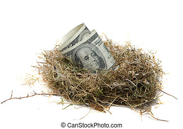 Nest Egg isolated on white - Financial Nest Egg concept...