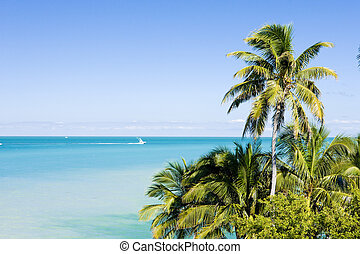 Florida Keys, Florida, USA