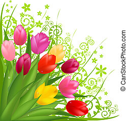 花束, の, 花