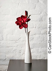 Flower in the white vase on the table