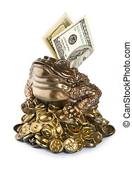 Moneybox frog isolated on a white background