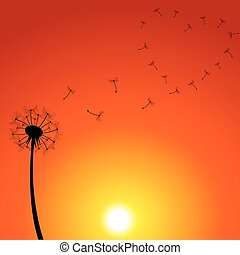 Dandelion Sunset Illustration