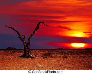 Desert fantasy - Desert landscape with dead tree at sunset