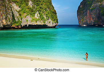 Tropical beach, Thailand - Tropical beach, Maya Bay, Andaman...