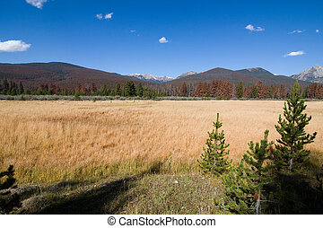 Meadows and mountains - Panorama of high mountains and...