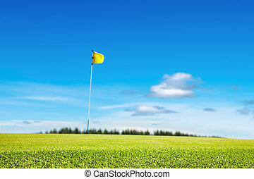 Golf field, focus on the grass, shallow depth of field