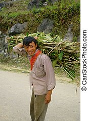 Male Black Hmong flowered with his - Male flowered Hmong...