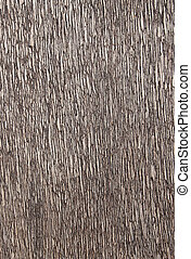 Wood texture lines background.