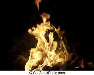 fire flames - cracking and snapping flames of a common...