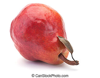 Red pear fruit - Red pear ripe fruit isolated on white...