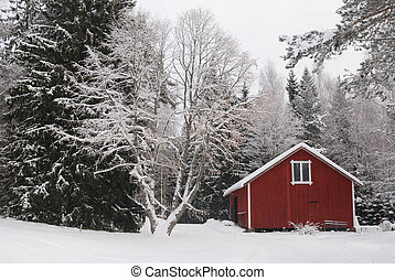 rural winter landscape with red shed in Finland