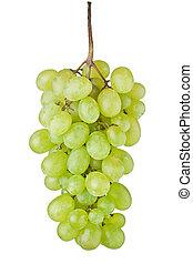 Grape fruit - Fresh green grape fruit on white background