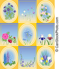 spring and summer flowers - an illustration of a variety of...