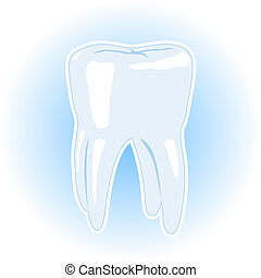 Illustration of a Healthy Tooth