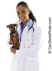 Veterinarian - Stock image of female veterinarian with small...