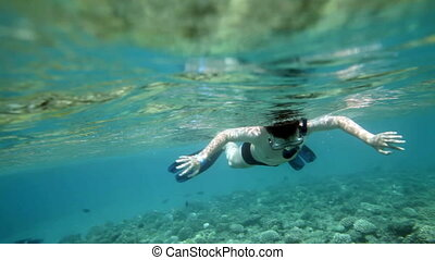 Snorkeler diving